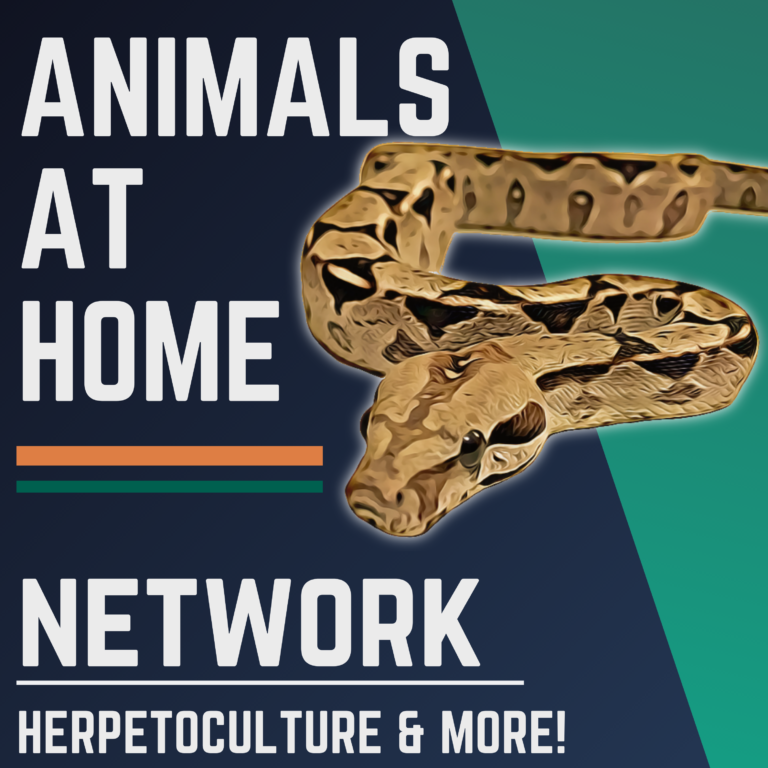 The Animals at Home Network
